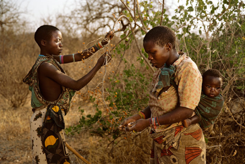 The-african-tribe-Hadza3 (2)