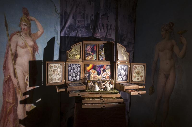 Le Cabinet des Mondes Cachés