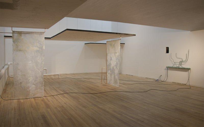 Wilfrid Almendra Light Boiled Like Liquid Soap installation, Galerie Audi talents
