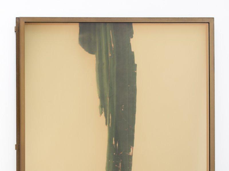 © Photo : Martin Argyroglo Courtesy de l'artiste et Galerie Bugada & Cargnel, Paris