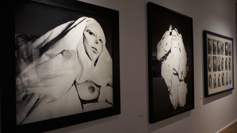 Exposition orlan maison photographie82