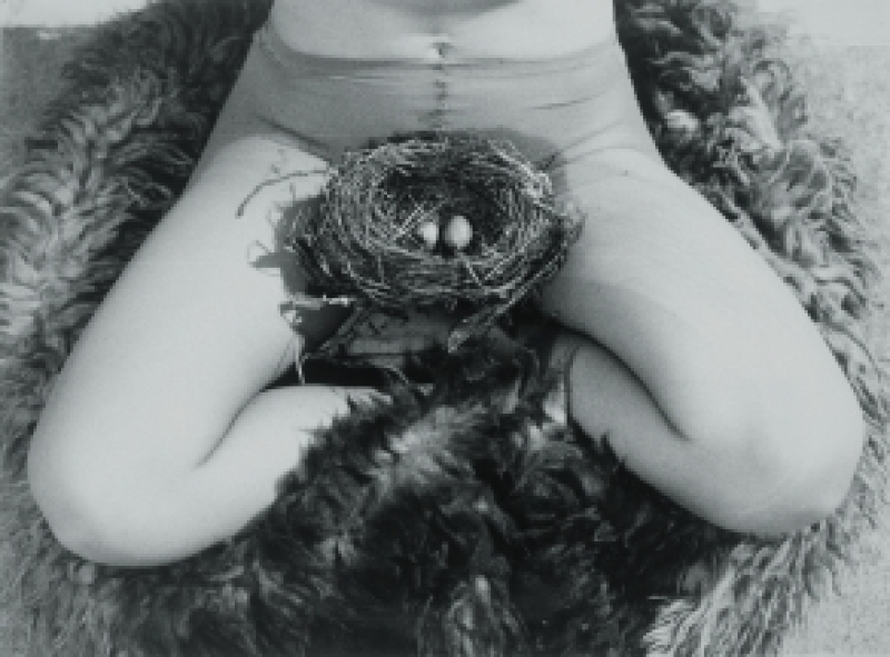 Avant-garde féministe des années 1970'S - MUMOK VIENNE - expointhecity
