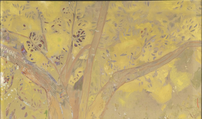 Redon Odilon (1840-1916). Paris, musée d'Orsay. RF1988-30.