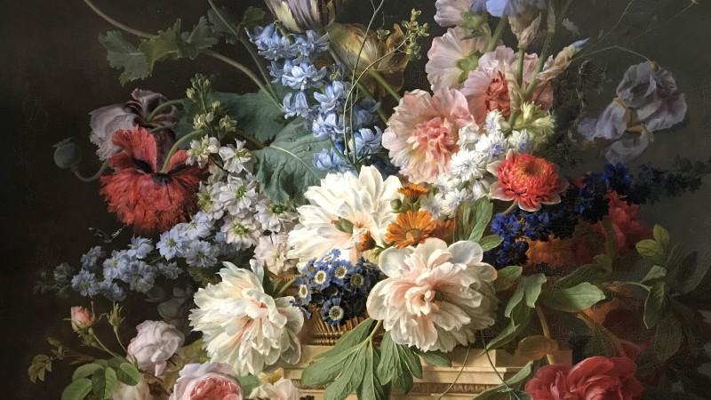Exposition Pierre-Joseph Redoute le pouvoir des fleurs musee de la Vie Romantique Paris_1857