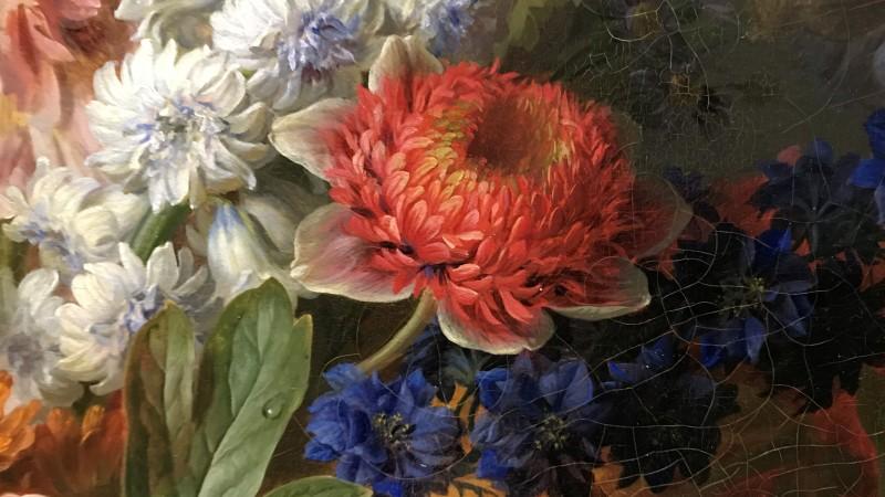Exposition Pierre-Joseph Redoute le pouvoir des fleurs musee de la Vie Romantique Paris_1858