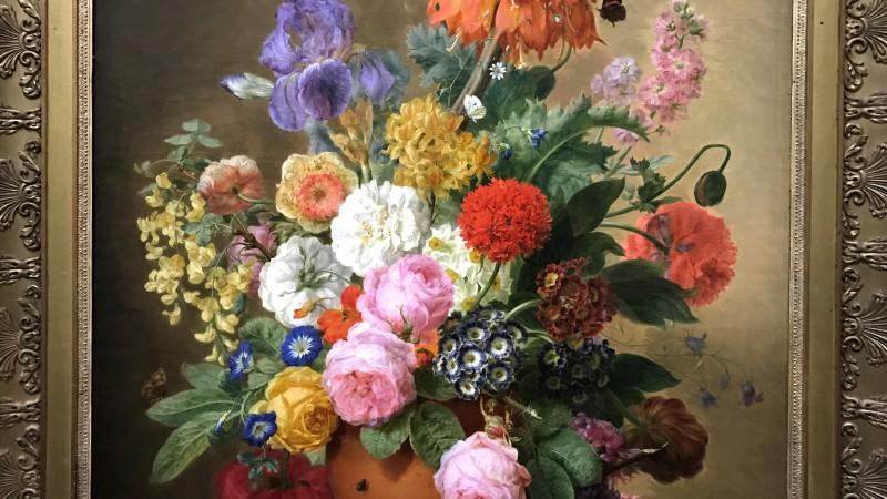 Exposition Pierre-Joseph Redoute le pouvoir des fleurs musee de la Vie Romantique Paris_1917