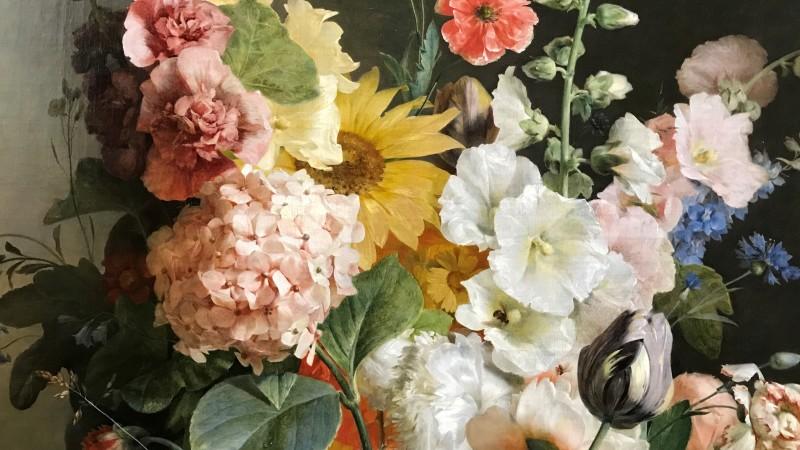 Exposition Pierre-Joseph Redoute le pouvoir des fleurs musee de la Vie Romantique Paris_1920