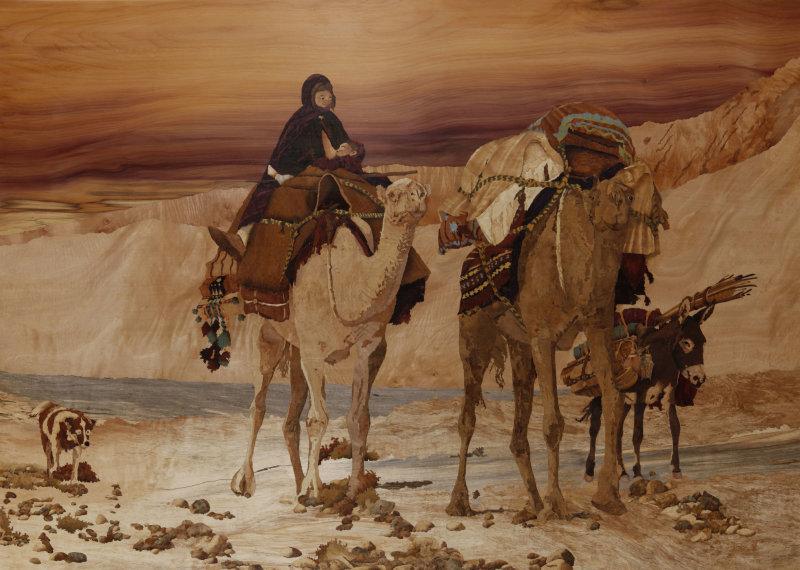 scene de desert
