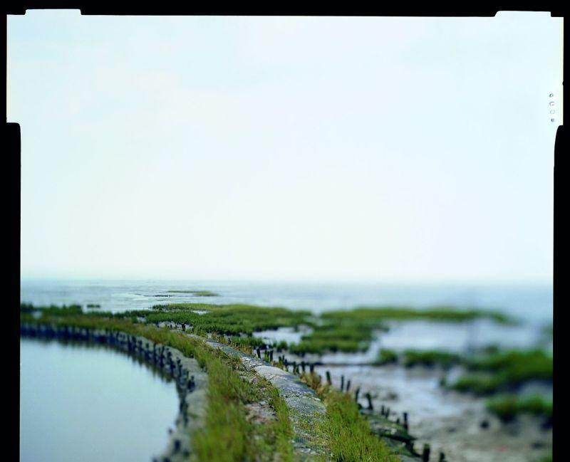 © Sabine Delcour / Cliché Mission photographique du Conservatoire du littoral