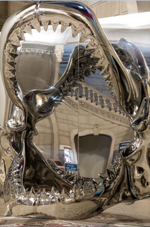 Philippe Pasqua, L'Effet Miroir, Exposition BORDERLINE, Musée Océanographique de Monaco