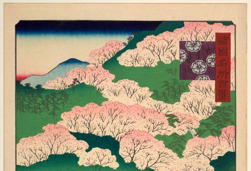 Utagawa Hiroshige II, Cerisiers en fleur à Yoshino, dans la province de Yamato Serie, Paysages japonais, Musée Guimet