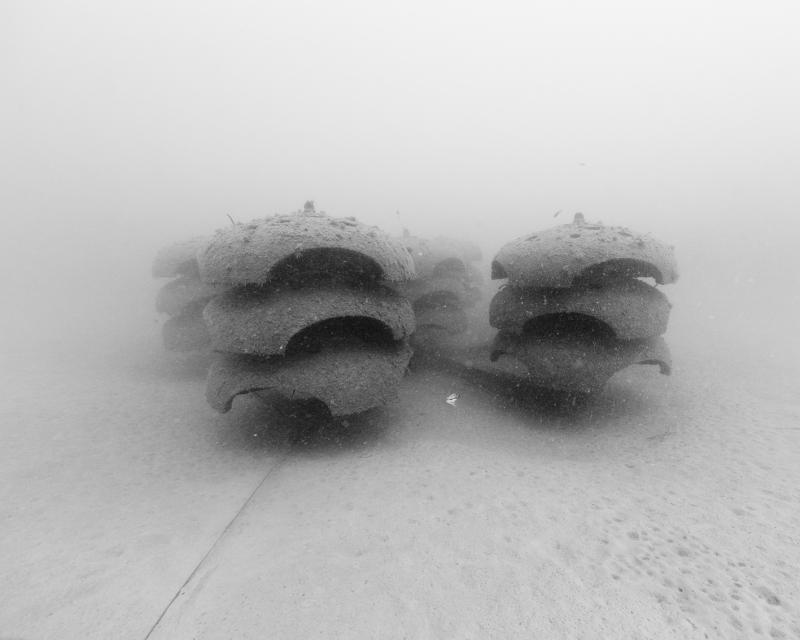 Nicolas Floc'h, Structure productive, récif artificiel P2A, -10 m, Cagnes-sur-Mer, 2014,  Photographie noir et blanc, hahnemühle matt fibre, 110 x 137,5 cm, Ed 3 + 1EA.