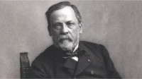 portrait-louis-pasteur