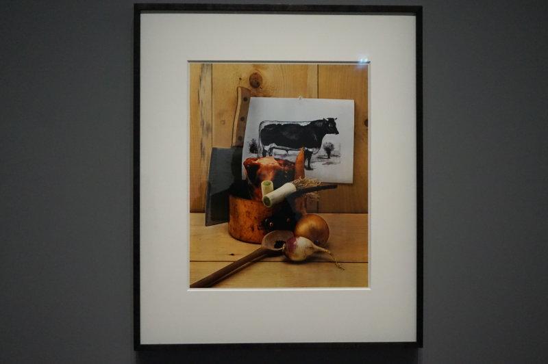 Vue de l'exposition Irving Penn au Grand Palais