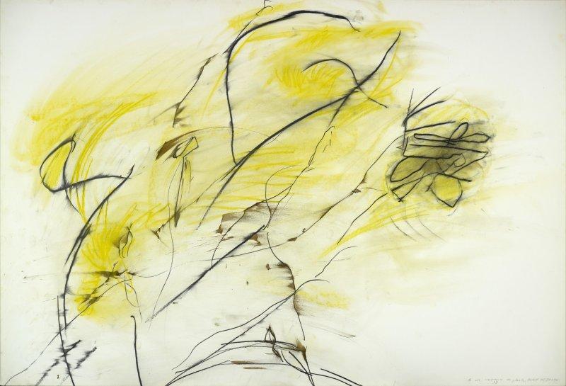 La Vie amoureuse des plantes, 1993