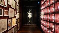 Vue du Musée Yves Saint Laurent Paris (41)