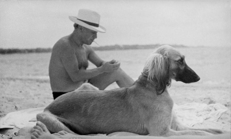 Pablo Picasso, 1936 Photographie de Man Ray