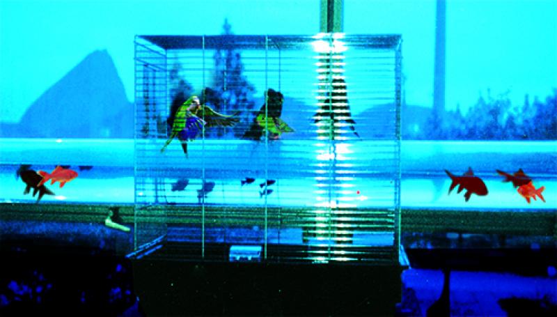La traversée des apparences, Vue de l'exposition Alain Fleischer au Centre des Arts d'Enghien