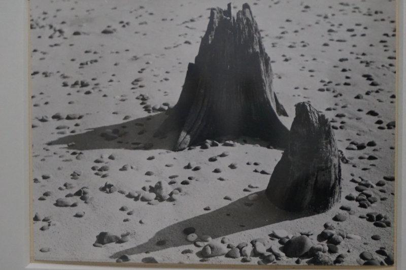 Vue de l'exposition Raoul Hausmann - Jeu de Paume (24)