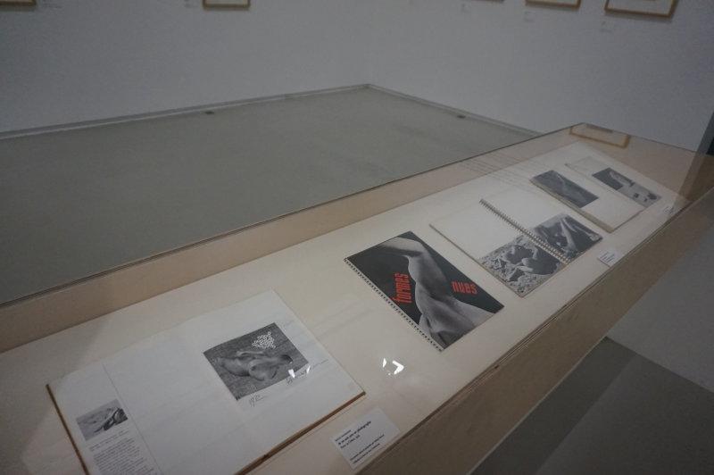 Vue de l'exposition Raoul Hausmann - Jeu de Paume (29)