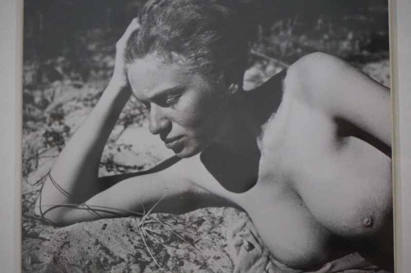 Vue de l'exposition Raoul Hausmann - Jeu de Paume (40)