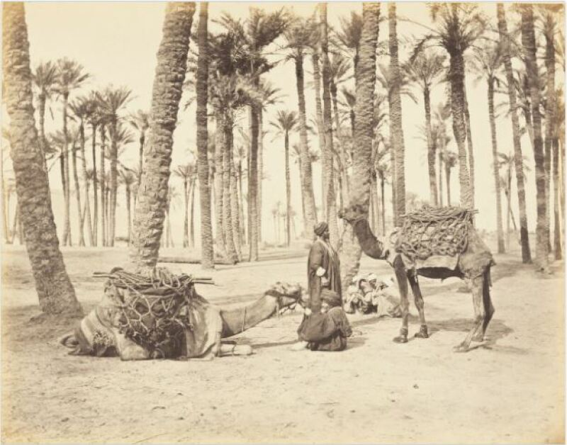 Gaston Braun, Halte d'une caravane dans une oasis,1869