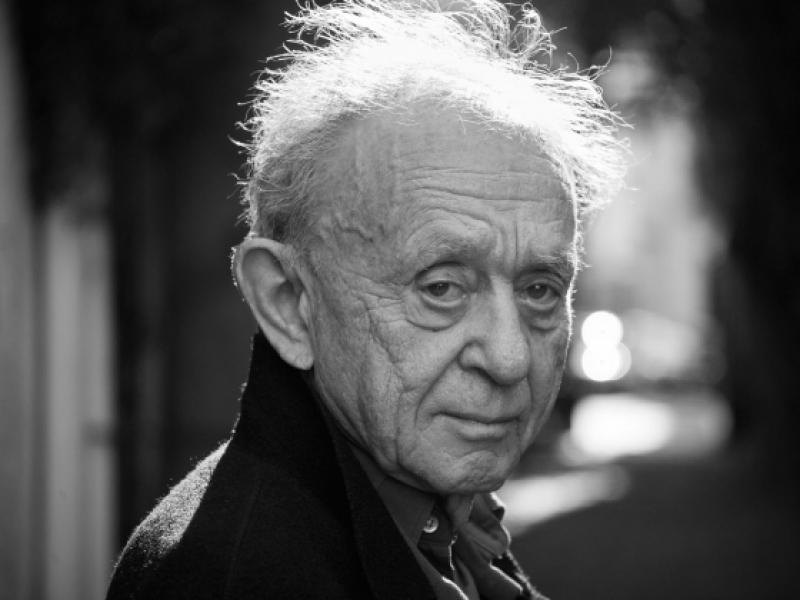 Frederick-Wiseman, l'invité d'honneur des Journées Internationales du film sur l'art JIFA au Louvre © Museum of fine arts boston, tous droits réservés