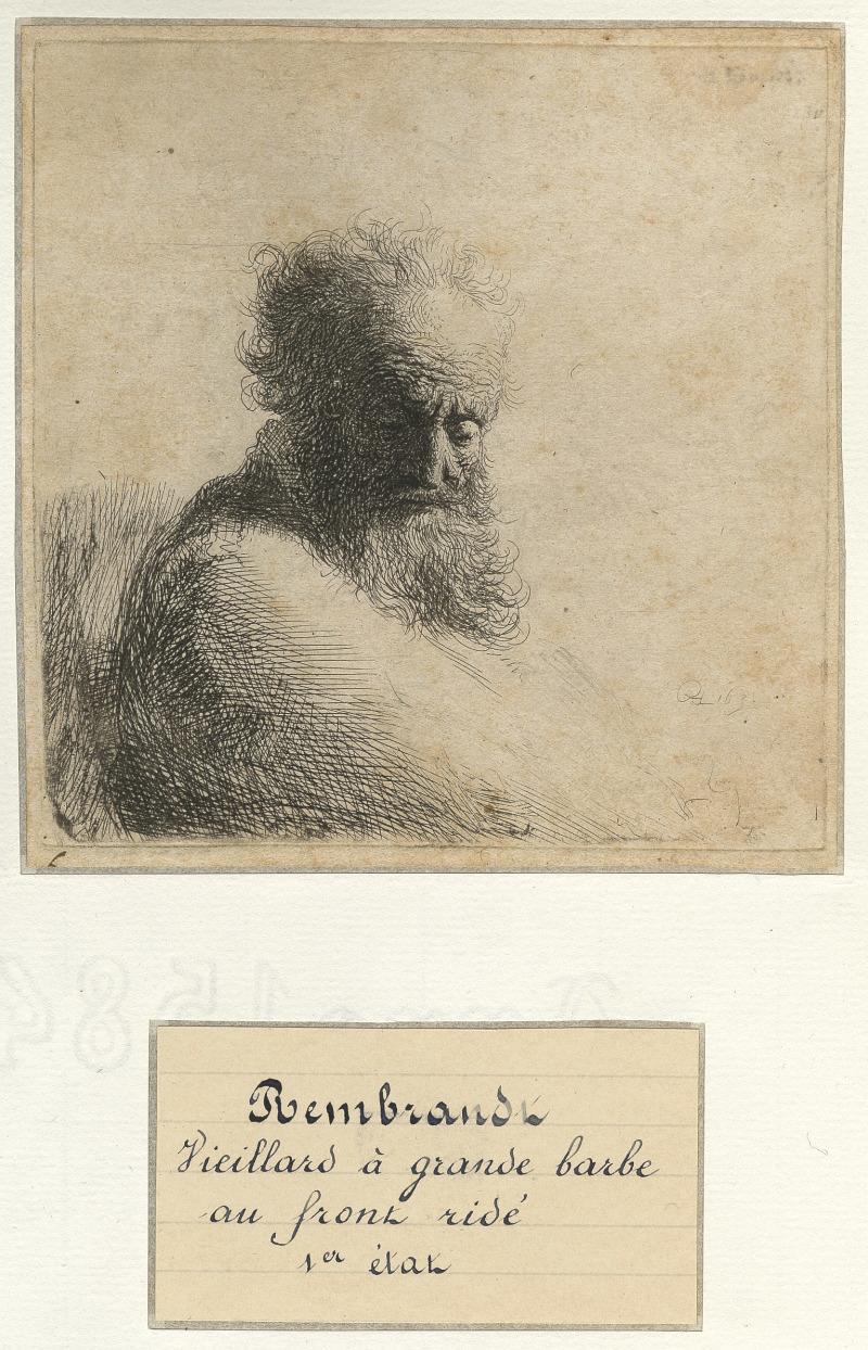 REMBRANDT Vieillard à grande barbe au front ridé,eau-forte, 1631