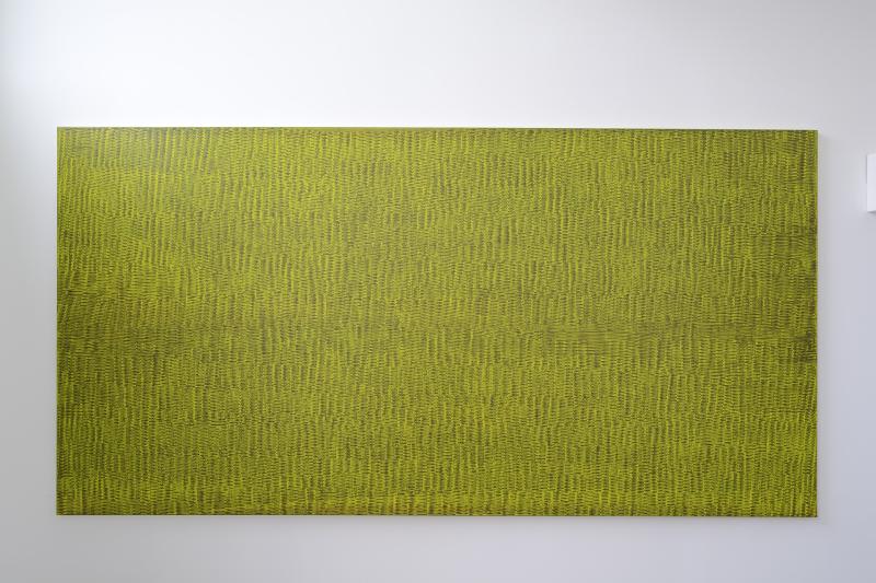 Hugo Schüwer Boss, Torrent (acid), 2016, acrylique et vernis sur toile, 160 x 320 cm