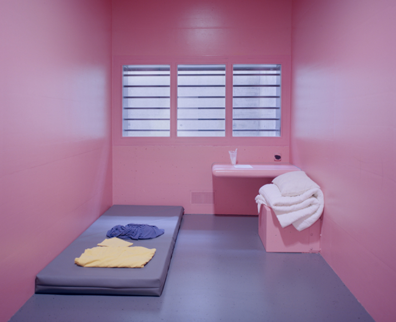 Pink Cells