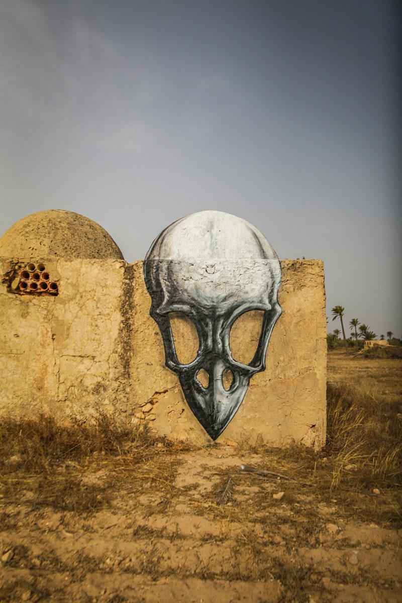 Crâne - Djerbahood