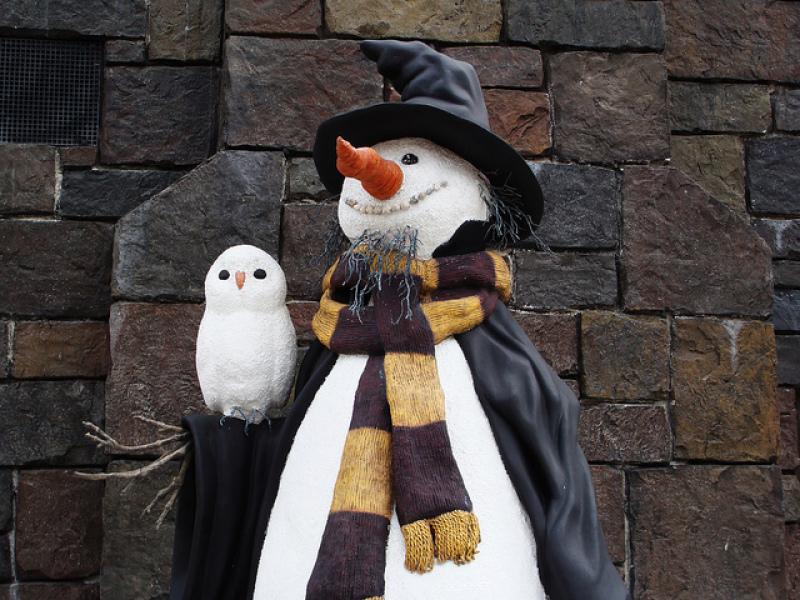 Bonhomme Harry Potter