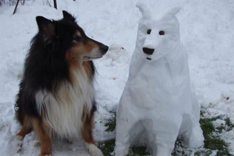 Bonhomme chien