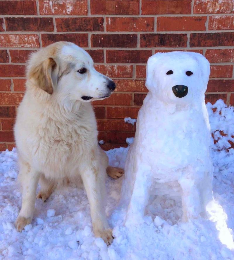 Top des bonhommes de neige (40)