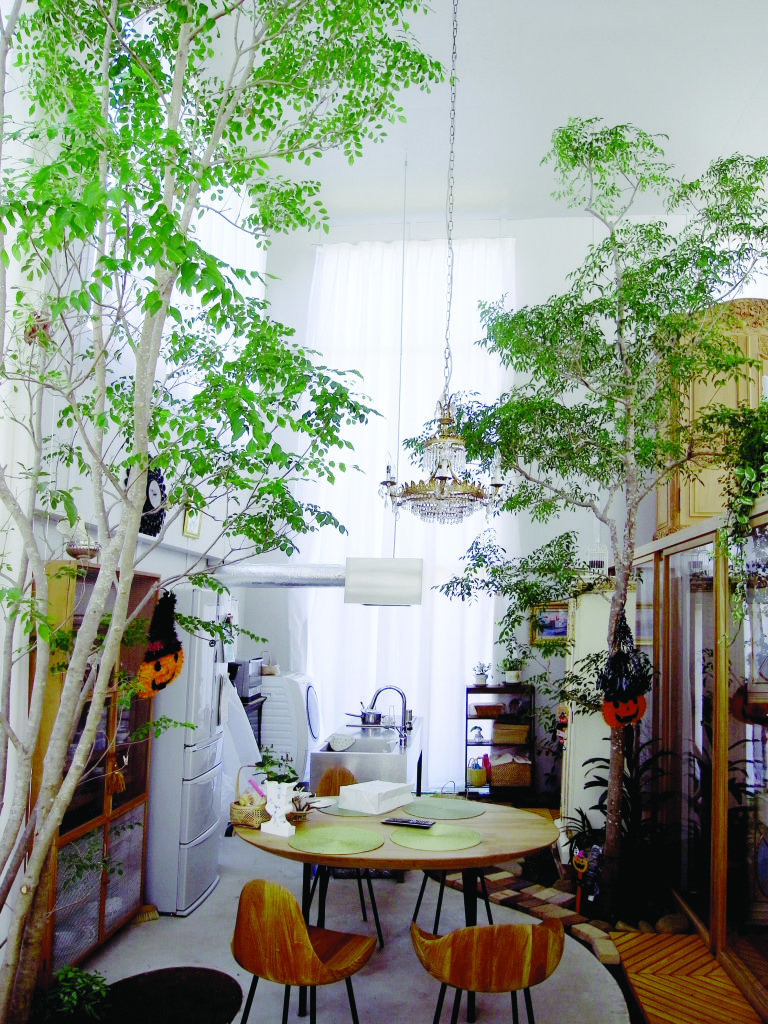 09. Junya Ishigami. House with Plants finished building