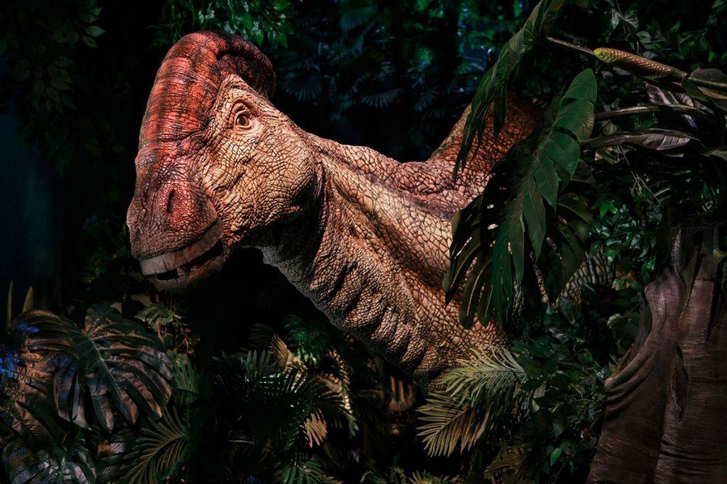 Vue de l'exposition Jurassic World