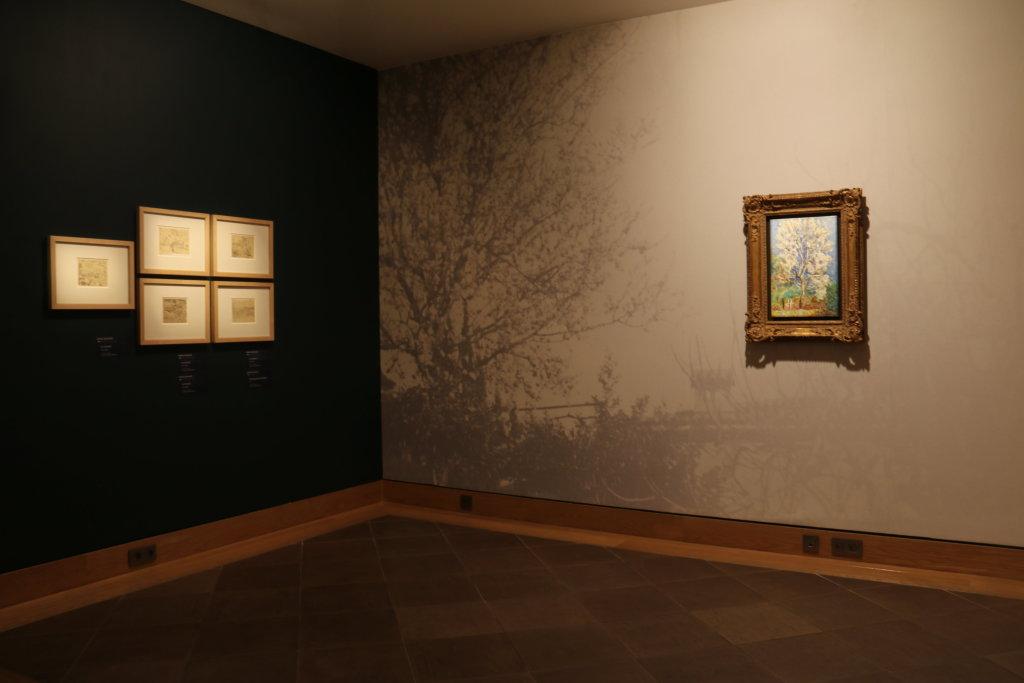 Parcours des collections - Musée Bonnard (1)