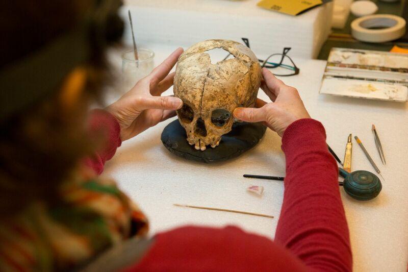 Restauration du crâne de l'enfant de Pech-de-l'Azé