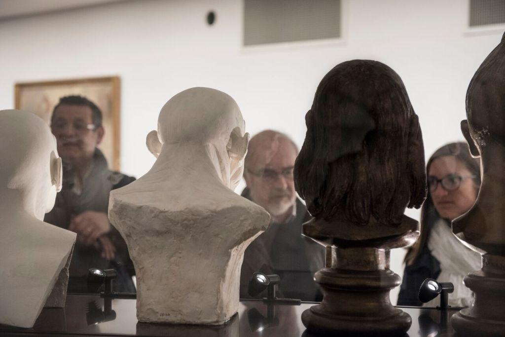 Vue de la vitrine des bustes d'hommes préhistoriques