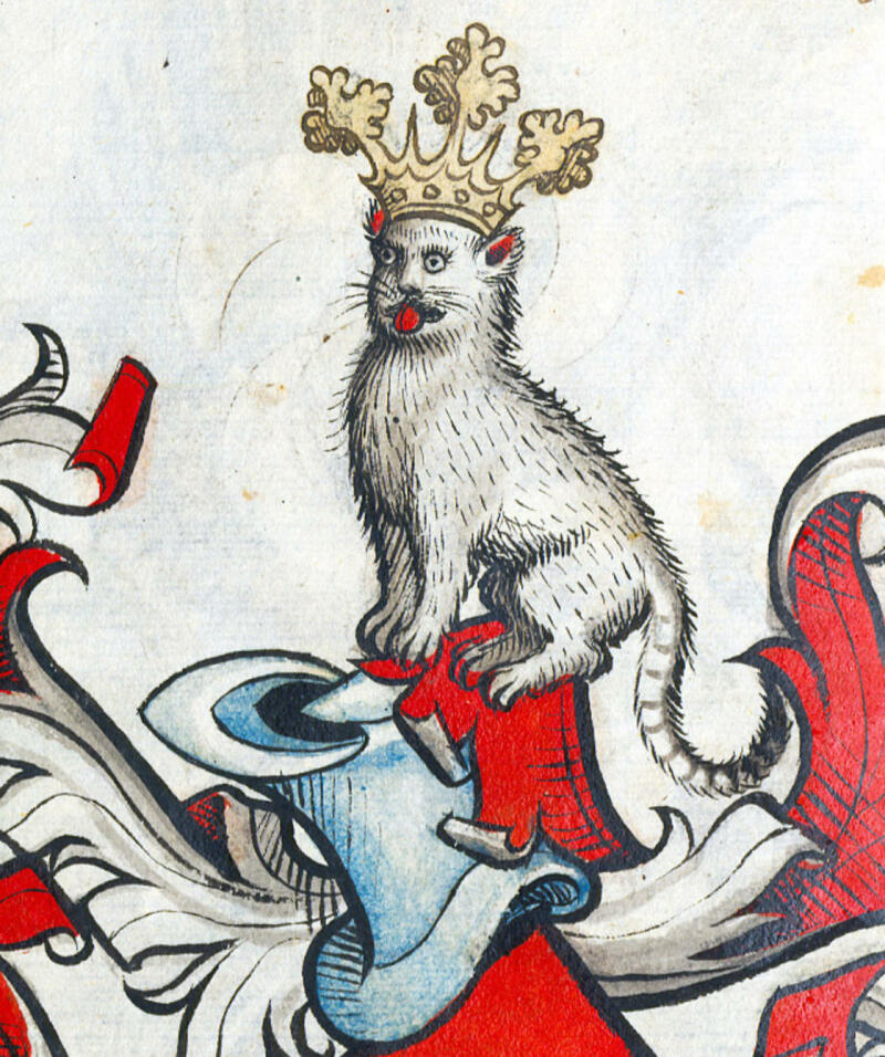 Chat moche médiéval