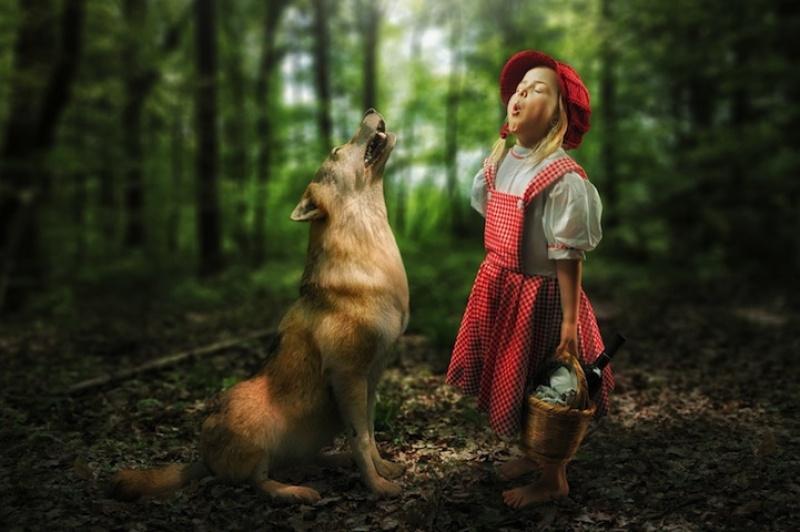 John Wilhelm - wolf