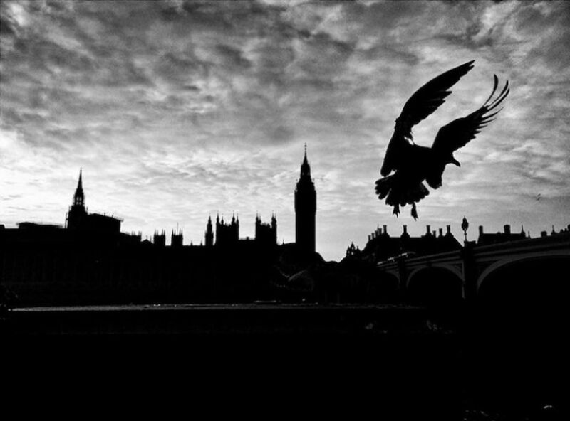 London after Brexit. (© Michel Juvet, gagnant de la catégorie obscurité)
