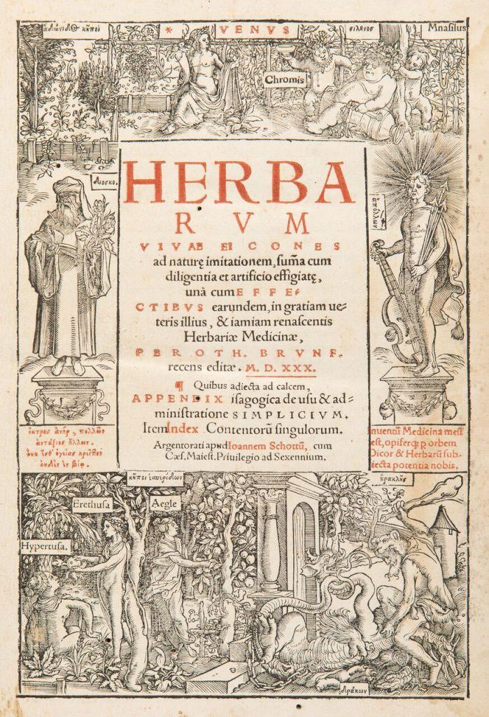 Otto Brunfels (1488-1534)Herbarum vivae ,Johannes Schot