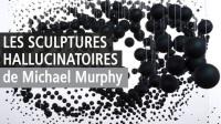 Anamorphoses Michael Murphy
