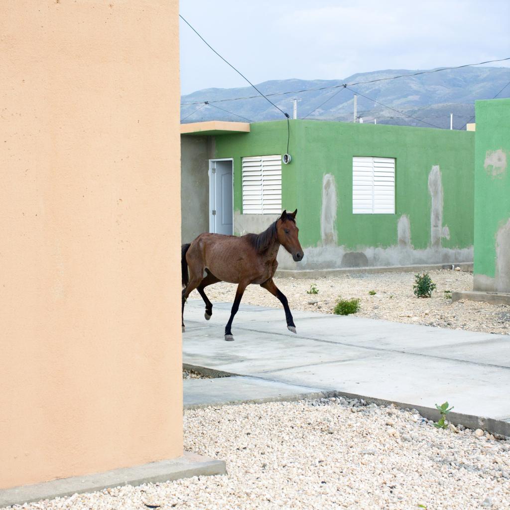 RECONSTRUCTION EN HAITI, 3 ANS APRES LE SEISME
