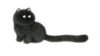 Fluffy Cats 7