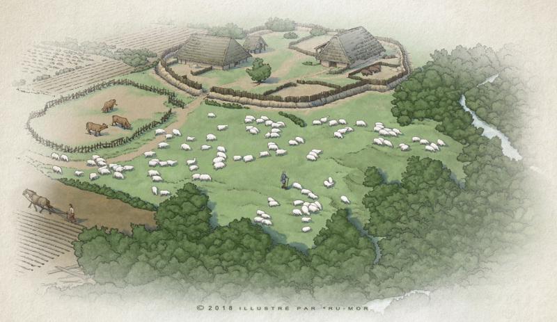 Illustration - vue aérien du ferme
