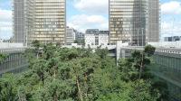 Jardin forêt BNF 2