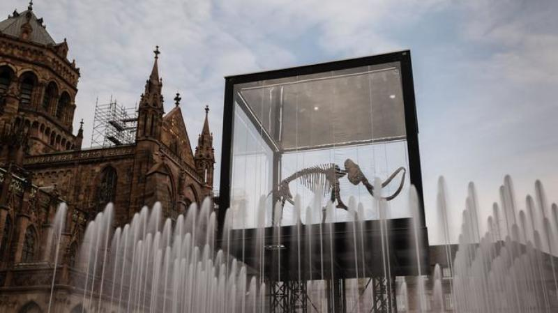 A mammoth skeleton on a lifting platform is seen behind water fountains as part of the installation 'Mammuthus Volantes' (Flying Mammoth) by French artist and architect Jacques Rival in Cathedral Square in Strasbourg, eastern France on May 3, 2018, as part of the 'Industrie Magnifique' festival.   Several art pieces will be shown in different squares of Strabourg from May 3 to May 13. In December 2017, Soprema, a company specialized in waterproofing, acquired the complete skeleton of the mammoth primigenius at an auction. It measures 3.4 metres in length, 5.4 metres in height and weighs approximately 1400 kilograms. / AFP PHOTO / PATRICK HERTZOG / RESTRICTED TO EDITORIAL USE - MANDATORY MENTION OF THE ARTIST UPON PUBLICATION - TO ILLUSTRATE THE EVENT AS SPECIFIED IN THE CAPTION