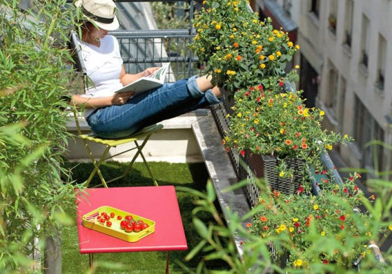 Un-balcon-vegetal